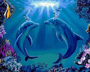 Танец дельфинов - Рисование по номерам