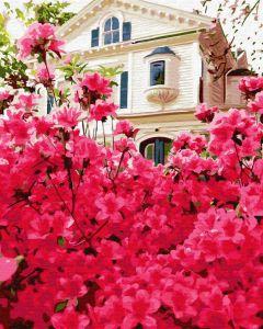 Дом в цветах - Рисование по номерам на холсте