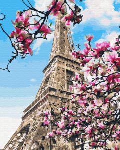 Цветение магнолий в Париже. Без коробки
