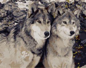 Преданность волка - Рисование по номерам