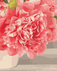 Розовые пионы - Картина по номерам