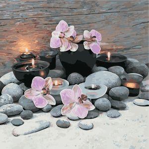 Розовые орхидеи - Роспись по номерам без коробки