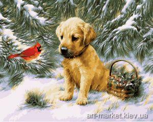 Купить раскраску по номерам VP464 Щенок и птичка кардинал - Роспись по номерам фото