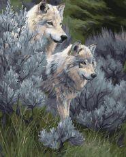 Пара волков 2. Без коробки - Набор для рисования