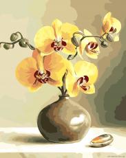 Желтые орхидеи - Рисование по номерам