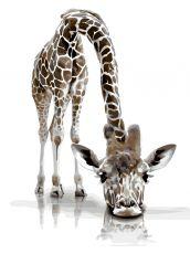 Забавный жираф. Без коробки