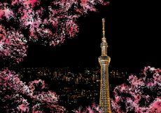 """Скретч-набор из 4-х картин """"Cherry Blossom"""""""