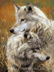 Степные волки - Раскраска по цифрам